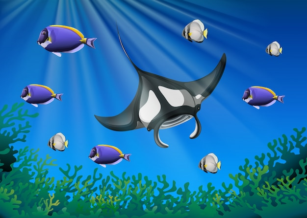 Stachelrochen und viele fische unter dem ozean