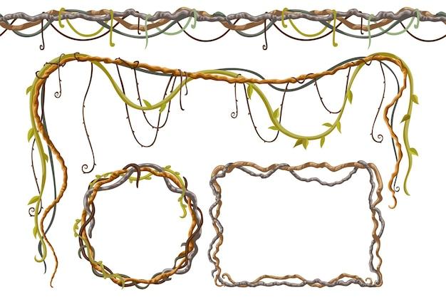 Stängel hedera helix efeu liane trauben weinrebe Premium Vektoren