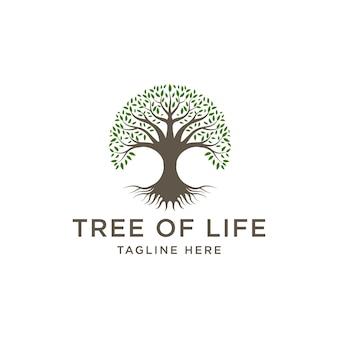 Stammbaum des lebens logo-design