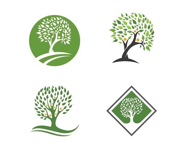 Stammbaum-logo-vorlage-vektor-illustration