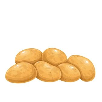 Stapel kartoffeln. rohe kartoffel ganze wurzelkulturen illustration. Premium Vektoren