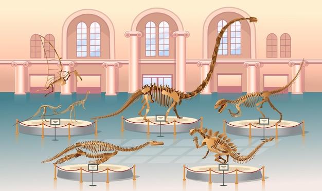 Stegosaurus-skelett auf weißem hintergrund.