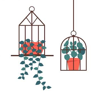 Stehendes und hängendes terrarium mit topfpflanzen