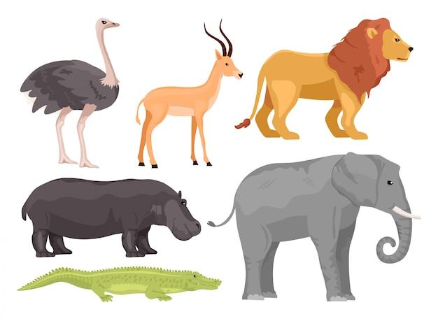 Stellen sie afrikanische tiere der karikatur ein. strauß, gazelle, löwe, nilpferd, elefant, krokodil. safari oder zoo konzept.