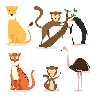 Stellen sie das wildtierreservat auf die erhaltung der fauna ein