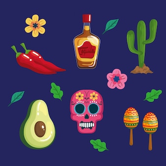 Stellen sie die traditionellen symbole von cinco de mayo ein