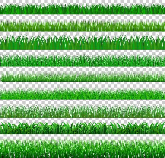 Stellen sie grünes gras dort ein, das viele auf transparentem, vektor-illustration lokalisiert wird