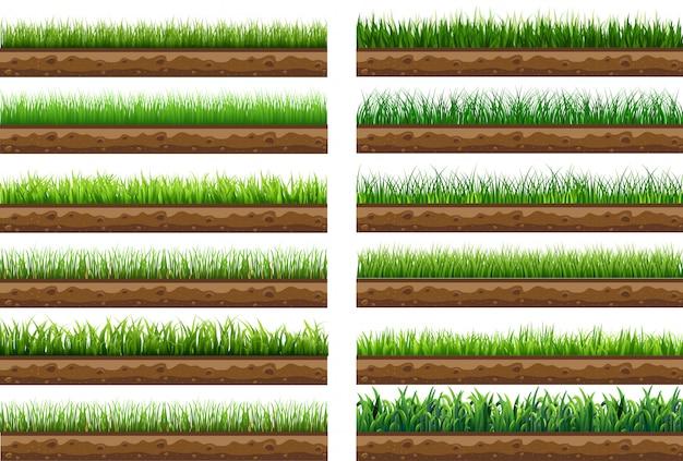 Stellen sie grünes gras mit lokalisierter vektorillustration ein