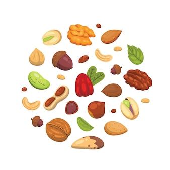 Stellen sie ikonenmuttern im cartoon ein. nussnahrungsmittelsammlung. erdnuss, haselnuss, pistazie, cashew, pekannuss, walnuss, paranuss, mandel und eichel.
