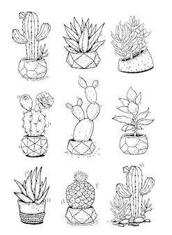 Stellen sie kaktus-kakteen-sukkulenten mit baumtopf-linienillustration ein