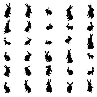 Stellen sie kaninchen und hase ostersilhouette ein. illustration