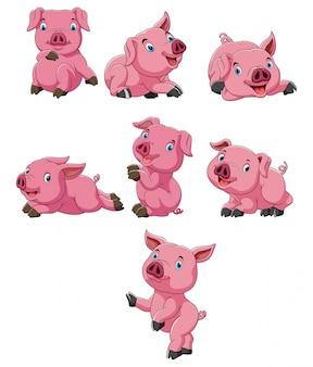 Stellen sie sammlung der schweinkarikatur ein