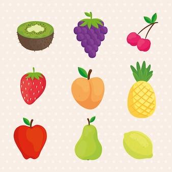 Stellen sie symbole für frische und köstliche früchte ein