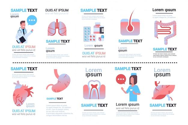 Stellen sie verschiedene infografiken der menschlichen inneren organe ein