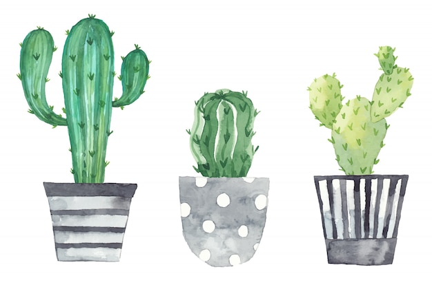 Stellen sie zimmerpflanzen in töpfe, die in aquarell gemalt werden. frische elemente lokalisiert auf einem weißen hintergrund. topfpflanzen gesetzt