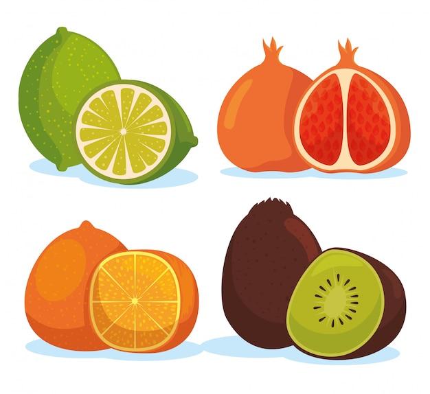 Stellen sie zitrone mit orange und kiwi mit granatapfelfrüchten ein