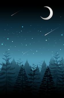 Sternschnuppe in der dunklen nacht