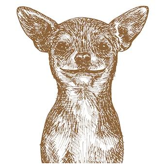 Stich-zeichnungs-illustration des hundes
