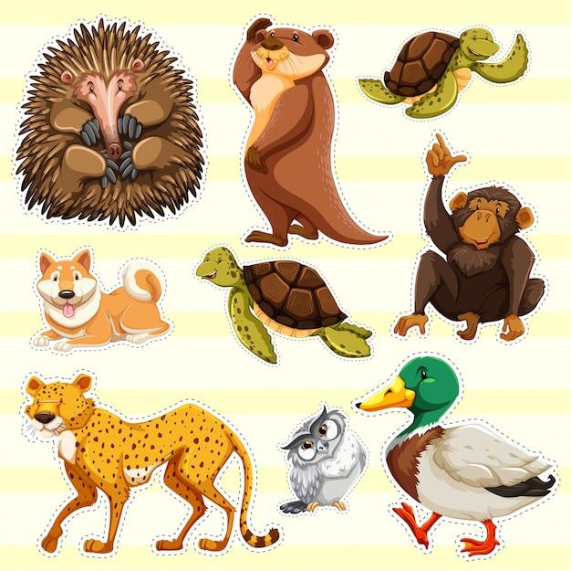 Sticker design für wilde tiere auf gelbem hintergrund