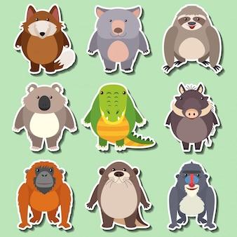 Sticker design für wilde tiere auf grünem hintergrund