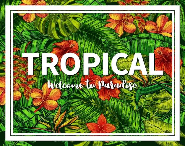 Stilvolles und trendiges typografisches sommerplakat