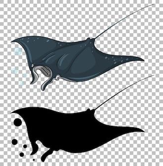 Stingray mit seiner silhouette auf transparent