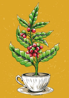 Stock vektorgrafik kaffeebaum in kaffeetasse