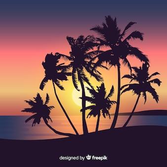 Strandsonnenuntergang mit palmenschattenbildern