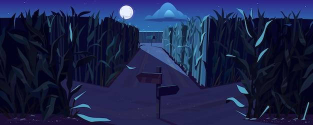 Straße auf maisfeld mit gabelung und wegweisern in der nacht