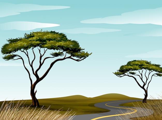 Straße durch savannenfeld