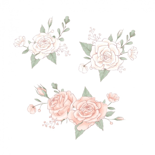 Strauß zarter rosen. handzeichnung
