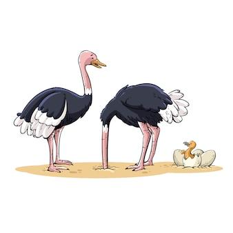 Straußenfamilie