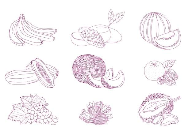 Strichzeichnungen frucht-set