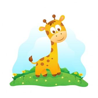 Süße baby giraffe