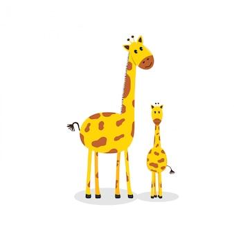 Süße giraffen