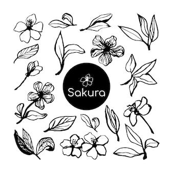 Süße handgezeichnete sakura blühendes set. traditionelle japanische oder chinesische frühlingsblumen im tintenstil. doodle-kirschpflanze.