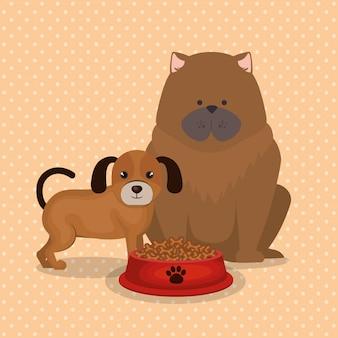 Süße hunde mit essen