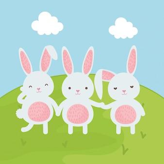 Süße kaninchen auf dem feld