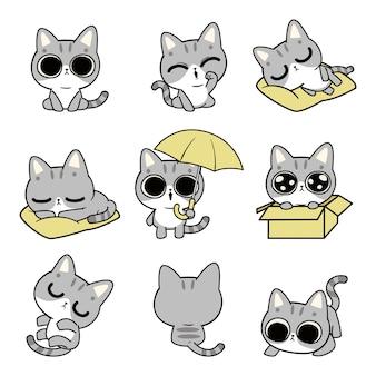 Süße katze charakter