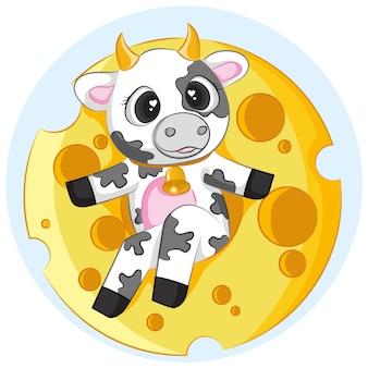 Süße kühe mit käse