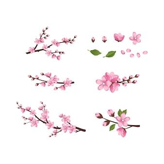 Süße sakura-blumen-icon-set, die kirschzweige haben frühlingsrosa blühende komposition mit ...