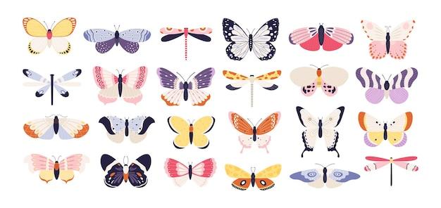 Süße schmetterlinge. bunte flügel des dekorativen frühlingsschmetterlings. monarch, motte und libelle. flacher vektorsatz des tropischen schönen blumeninsekts. frühlingsmonarch und schmetterling, insektentierillustration