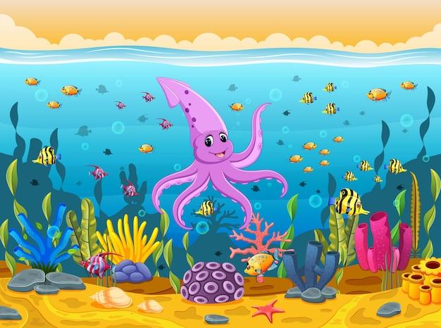 Süße tintenfische unter dem meer