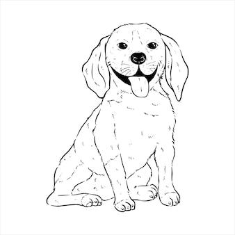 Süßer glücklicher corgi-hundeausdruck mit handzeichnung oder skizzenstil