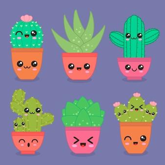 Süßer kaktus.