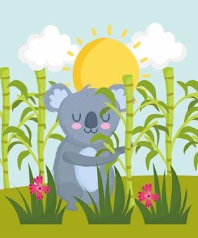 Süßer koala im wald