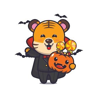 Süßer tiger-vampir, der halloween-kürbis hält süße halloween-cartoon-illustration