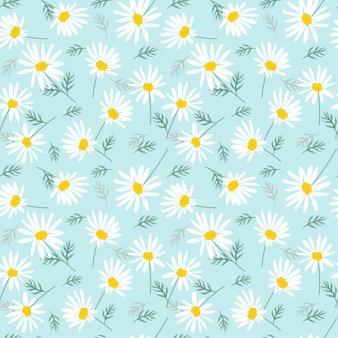 Süßes gänseblümchen blüht auf hellem blauem nahtlosem muster.
