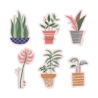 Süßes set mit trendigen topfpflanzen. großstadt-dschungel. flacher bunter vektor. kann für aufkleber, design verwendet werden