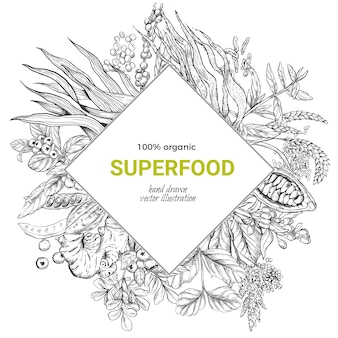 Superfood-rautenrahmenfahne, realistische skizze